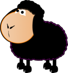 black-sheep-md